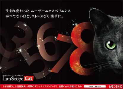 BCN_cat8_1